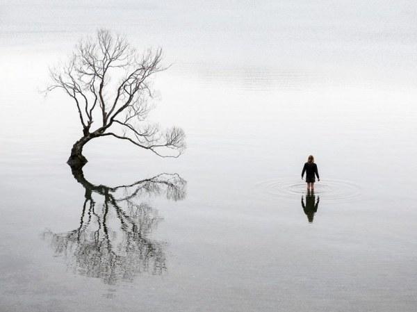 одиночеств